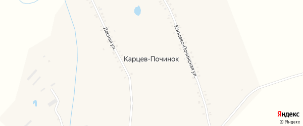 Карцевопочинокская улица на карте деревни Карцева Починка с номерами домов