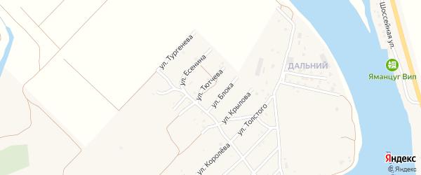 Улица Ф.Тютчева на карте села Началово с номерами домов