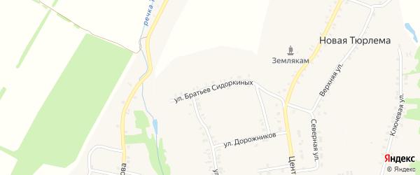 Улица Братьев Сидоркиных на карте деревни Новой Тюрлемы с номерами домов