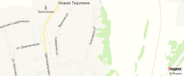 Ключевая улица на карте деревни Новой Тюрлемы с номерами домов