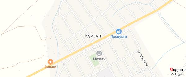 Улица М.Лезгинцева на карте села Куйсуна с номерами домов