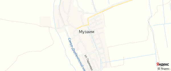 Карта села Музаима в Дагестане с улицами и номерами домов