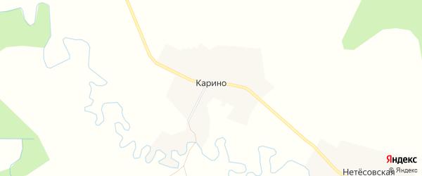 Карта деревни Карино в Архангельской области с улицами и номерами домов