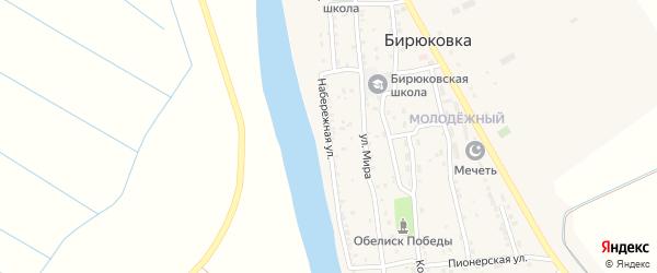 Набережная улица на карте села Бирюковки с номерами домов