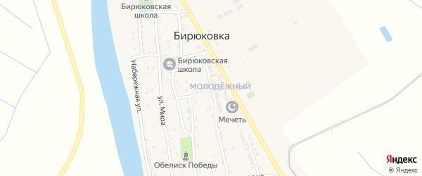 Молодежная улица на карте села Бирюковки с номерами домов
