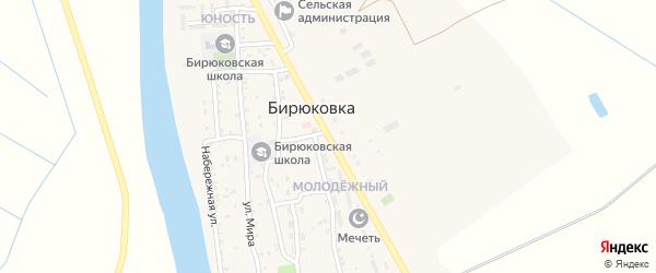 Дорожная улица на карте села Бирюковки с номерами домов