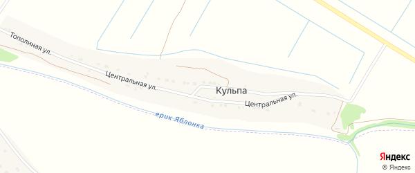 Центральная улица на карте поселка Кульпа с номерами домов
