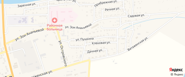 Улица Пушкина на карте села Красного Яра с номерами домов