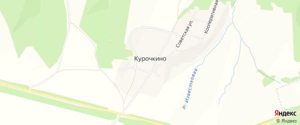Карта деревни Курочкино в Чувашии с улицами и номерами домов