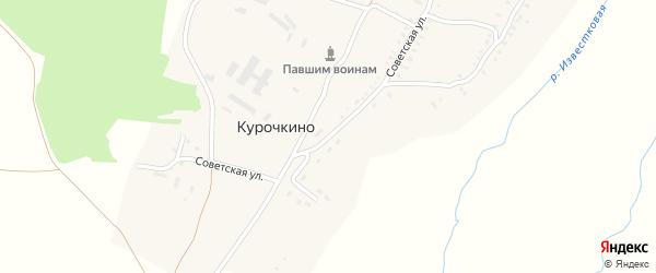 Советская улица на карте деревни Курочкино с номерами домов
