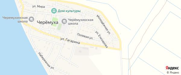 Полевая улица на карте села Черемухи с номерами домов