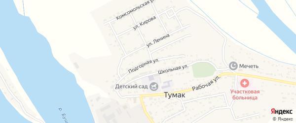 Подгорная улица на карте села Тумака с номерами домов