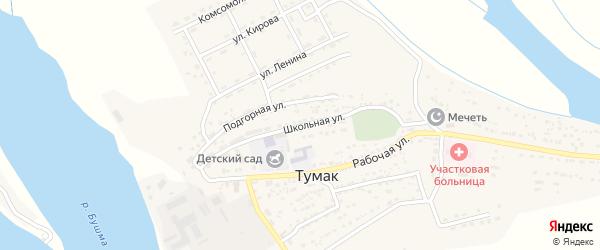 Школьная улица на карте села Тумака с номерами домов
