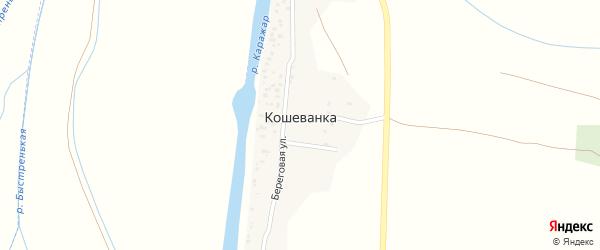 Береговая улица на карте села Кошеванка с номерами домов
