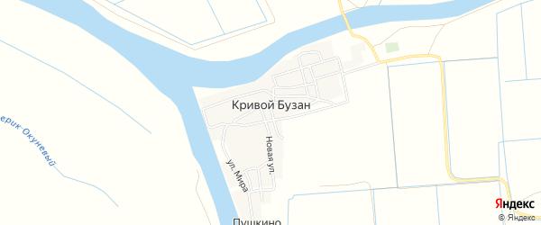 Карта села Кривой Бузана в Астраханской области с улицами и номерами домов