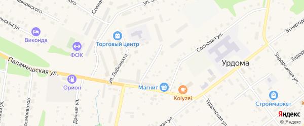 Паламышский переулок на карте поселка Урдома с номерами домов