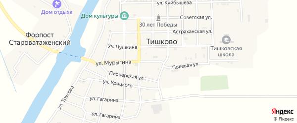 Полевая улица на карте села Тишково с номерами домов