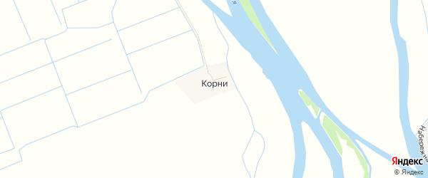Карта села Корней в Астраханской области с улицами и номерами домов