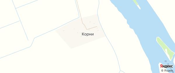 Речная улица на карте села Корней с номерами домов