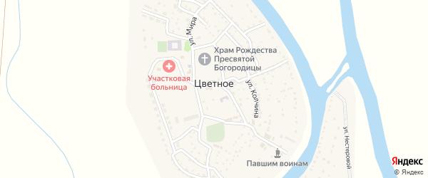 Солнечная улица на карте Цветного села с номерами домов