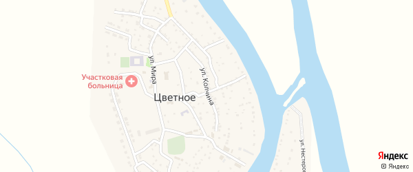 Улица Колчина на карте Цветного села с номерами домов