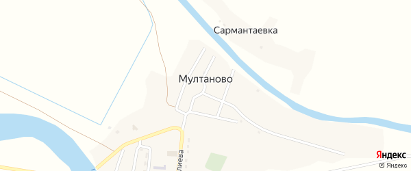 Центральный переулок на карте села Мултаново с номерами домов
