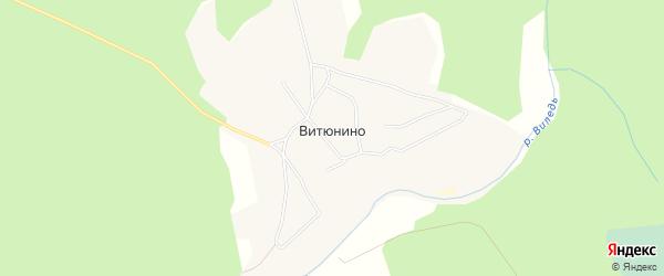 Карта поселка Витюнино в Архангельской области с улицами и номерами домов