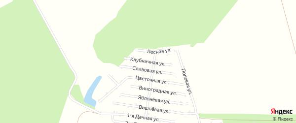 Клубничная улица на карте садового некоммерческого товарищества Восхода с номерами домов
