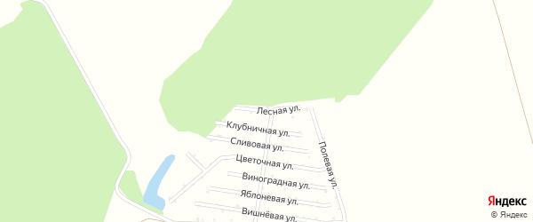 Лесная улица на карте садового некоммерческого товарищества Восхода с номерами домов