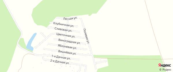 Полевая улица на карте садового некоммерческого товарищества Восхода с номерами домов