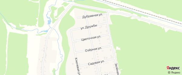 Цветочная улица на карте садового некоммерческого товарищества Птицевода с номерами домов