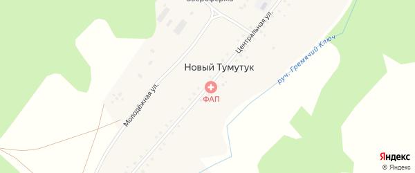 Центральная улица на карте села Нового Тумутука с номерами домов