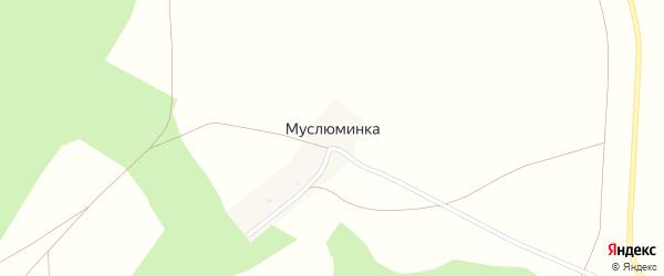 Улица Муслюм на карте деревни Муслюминки с номерами домов