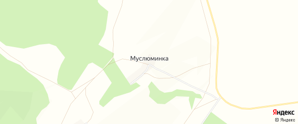Карта деревни Муслюминки в Башкортостане с улицами и номерами домов