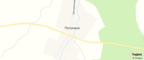 Луговая улица на карте деревни Петровки с номерами домов