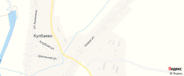 Новая улица на карте села Кулбаево с номерами домов
