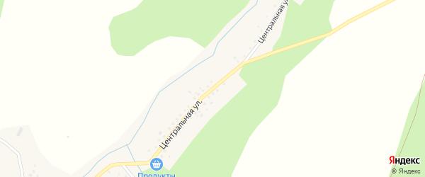 Центральная улица на карте села Таллы-Сыза с номерами домов