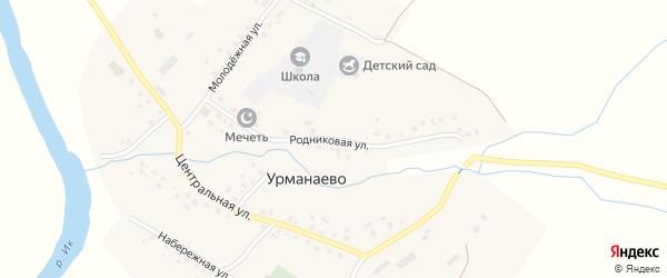 Родниковая улица на карте села Урманаево с номерами домов