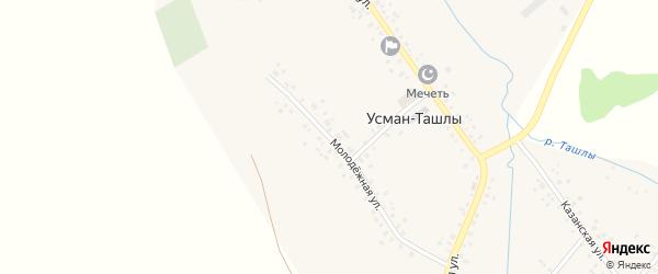 Молодежная улица на карте села Усмана-Ташлы с номерами домов