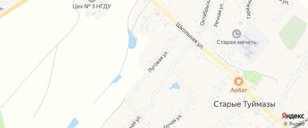 Луговая улица на карте села Старых Туймазы с номерами домов