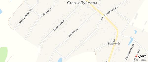 Лесная улица на карте деревни Камыштау с номерами домов
