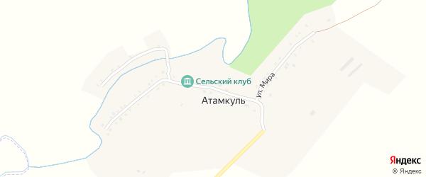 Улица Мира на карте села Атамкуля с номерами домов