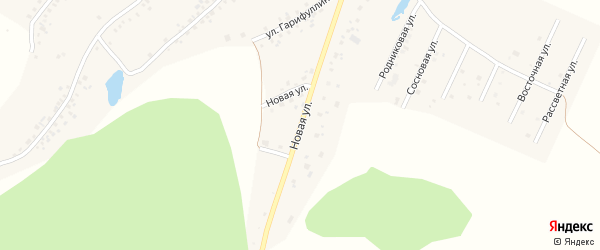Новая улица на карте села Старых Туймазы с номерами домов