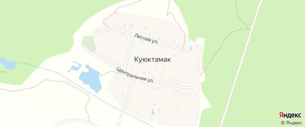 Лесная улица на карте деревни Куюктамака с номерами домов