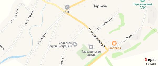 Молодежная улица на карте села Тарказы с номерами домов