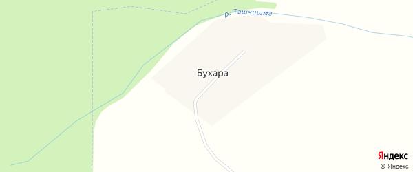 Центральная улица на карте деревни Бухары с номерами домов
