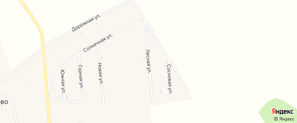 Лесная улица на карте деревни Исмаилово с номерами домов