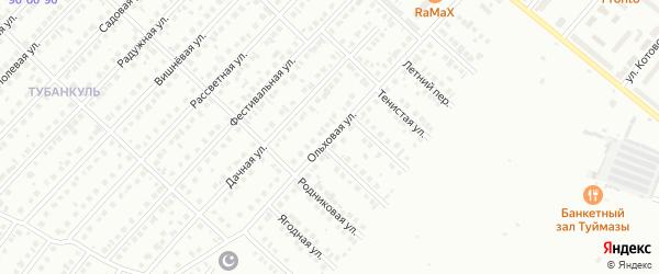 Ольховая улица на карте Туймаз с номерами домов