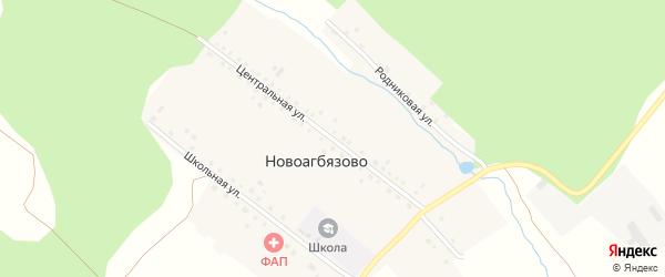Центральная улица на карте деревни Новоагбязово с номерами домов