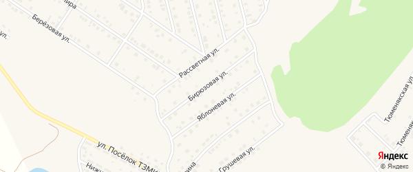 Бирюзовая улица на карте села Райманово с номерами домов